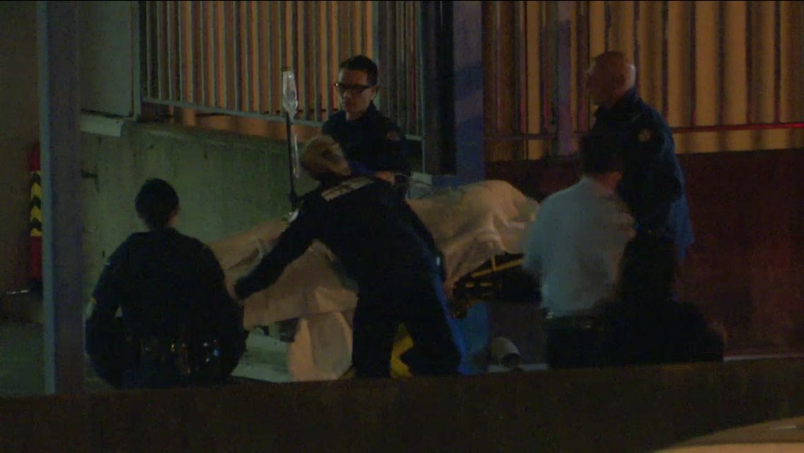 Police are hunting at least one attacker after a woman in her 20's was found with head and neck injuries on a #Telopea street. @7NewsSydney