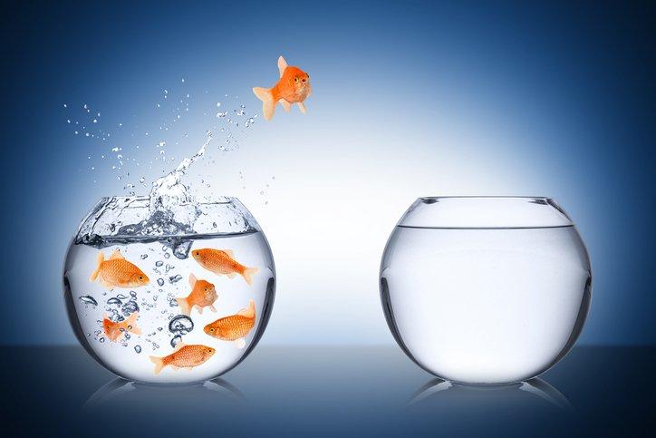 ETF Investors Can Look ... -  https:// goo.gl/KbrmWX  &nbsp;   #CurrentAffairs #EmergingMarkets #GlobalETFs #LargeCap #Lead #MidCap #REEM #REFA<br>http://pic.twitter.com/cV3y39JtjD