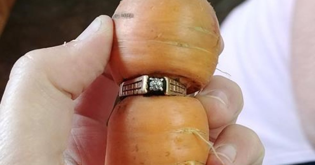 Carrot reunites Alberta woman with lost ring 13 years later https://t....