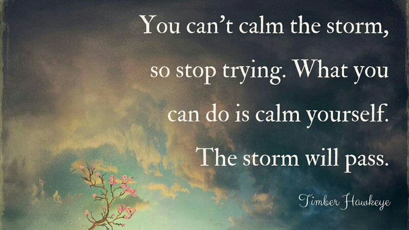 Good Life Quotes On Twitter You Cant Calm The Storm So Stop