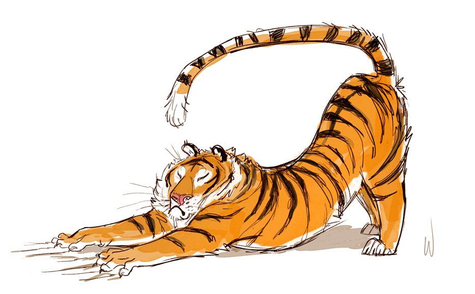 A lunchtime tiger sketch. Remember to stretch https://t.co/sGbH1g1wCm
