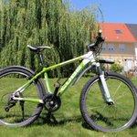 Ein Arschloch hat mein Rad aus meinem Keller gestohlen, Düsseldorf Derendorf: CUBE Analog, Rahmennummer: W0WD14888.  Freue mich über RT