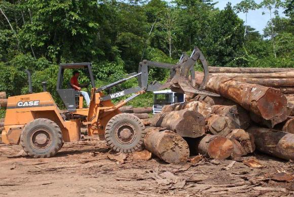 Multas do Ibama poderão ser convertidas em projetos ambientais https://t.co/sp55pyP5Sk 📷Arquivo/Agência Brasil