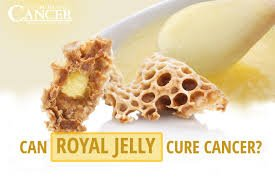 Perspection of #RoyalJelly and #BeeHoney as new antibacterial therapy agents of hospital infections.  http://www. alliedacademies.org/articles/persp ection-of-royal-jelly-and-bee-honey-as-new-antibacterial-therapyagents-of-hospital-infections.html &nbsp; … <br>http://pic.twitter.com/Rb2Swcof3u