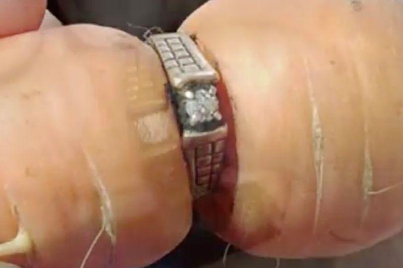 これは感動する!収穫した人参が失くしたはずの婚約指輪をはめていた!