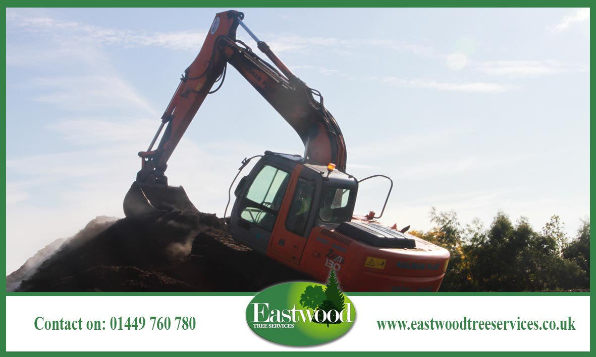 Read about our commercial #TreeSurgery services &gt;&gt;&gt;  http:// bit.ly/EastwoodTreeSe rvicesCommerical &nbsp; …  #Eastwood #Arborists<br>http://pic.twitter.com/zzWGn546i7