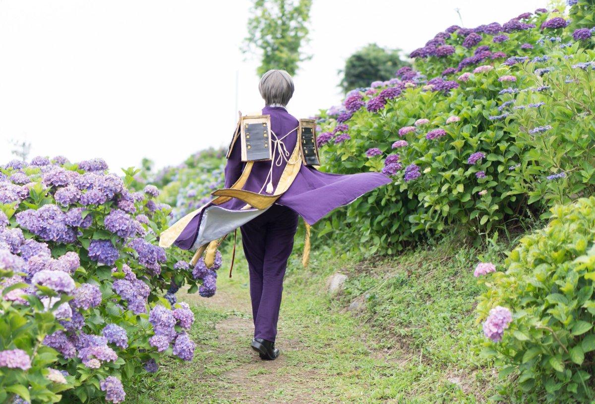 【コスプレ】長谷部の背中と紫陽花