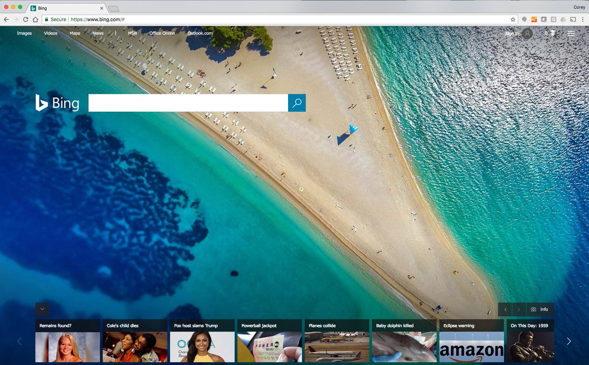 For a brief, beautiful moment, Bing's homepage featured a penis