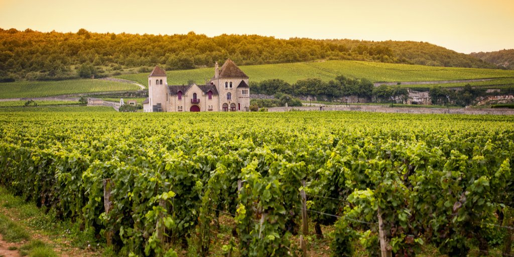 Burgundy - the very heart of France  http:// bit.ly/2rIe2gh  &nbsp;   #burgundy #dijon #beaune #wine #holiday<br>http://pic.twitter.com/sSr8Cq2g0e