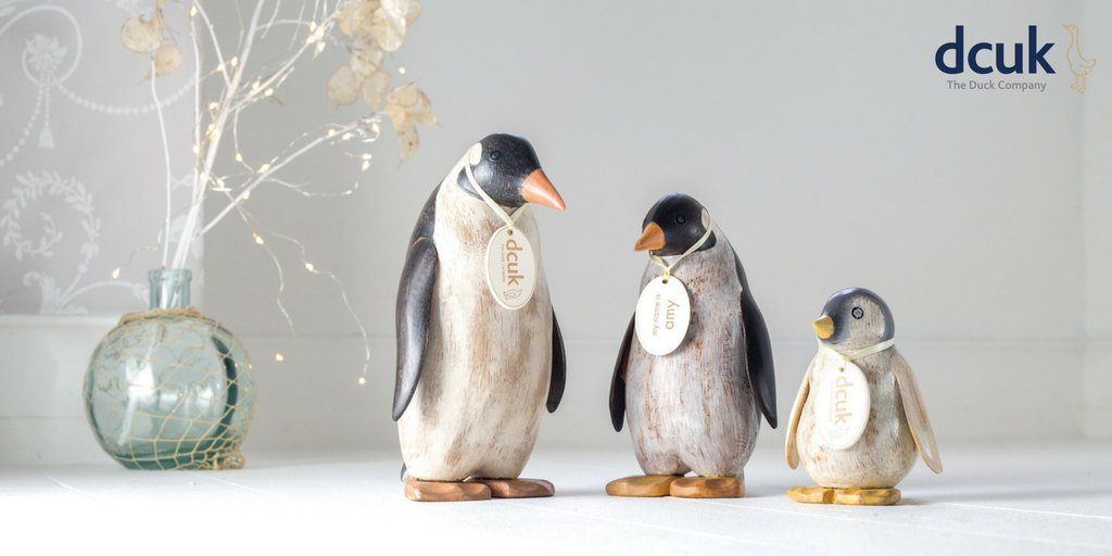 What are you and your family getting up to this month? Shop our Pengui...