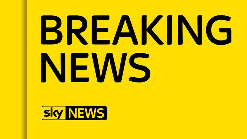 A van has crashed into a crowd of people in Barcelona's city centre, according to local media reports