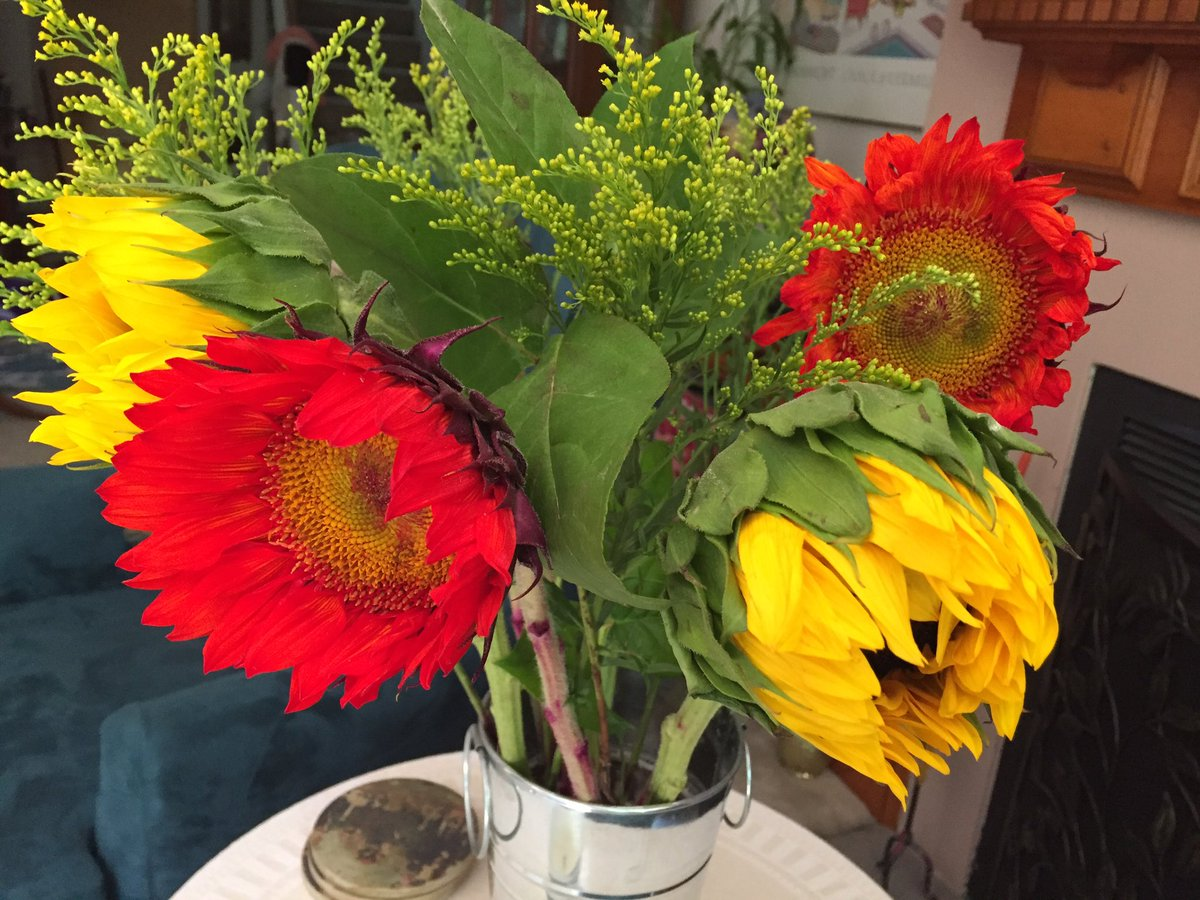 When your day is kinda ho-hum ...... then you come home and find this on your doorstep  #Sunflowers #Thursdaysurprise #friends #bff<br>http://pic.twitter.com/sngMiPyhOJ