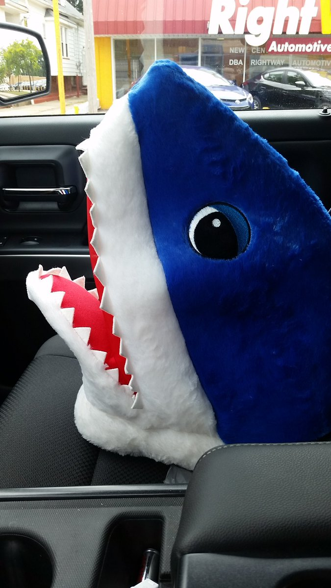 Sometimes you gotta wonder who comes up with these ideas and who buys them...  I now own a #Maskimals Shark <br>http://pic.twitter.com/voCFipjCLf