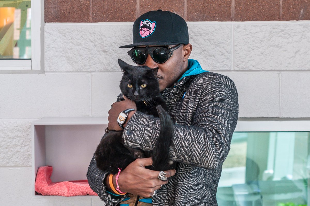 Shout out to all the black cats in the world Retweet this if you love...