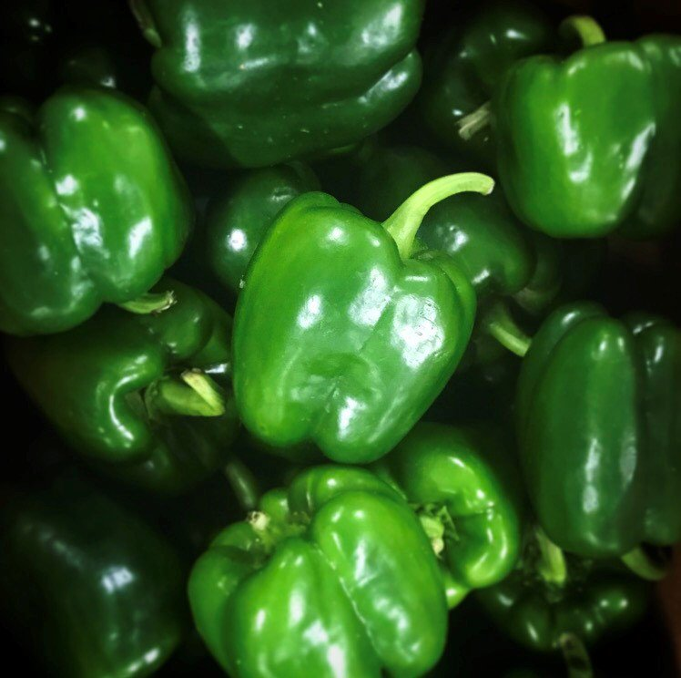 We have some nice looking green bell peppers in #Michigan right now! We love #summer #produce! #nofarmsnofood #fresh #GrownInMichigan<br>http://pic.twitter.com/NJSshvHUTu