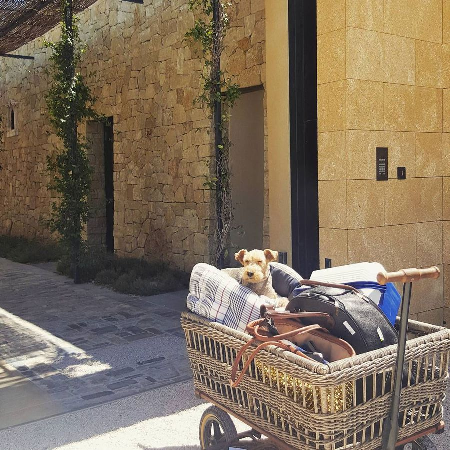 It's a hard summer for Tatler freelancer Tullah & mum as they road trip around some of France's most twinkly hotels https://t.co/tm83PuFSNs