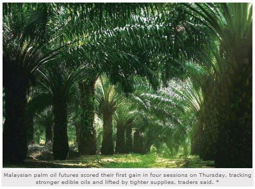 #MalaysianPalmOil/Vegoils: Market factors to watch Friday Aug 18  http:// bit.ly/2vNY4ju  &nbsp;    #businessnews <br>http://pic.twitter.com/jay4VnhHsb