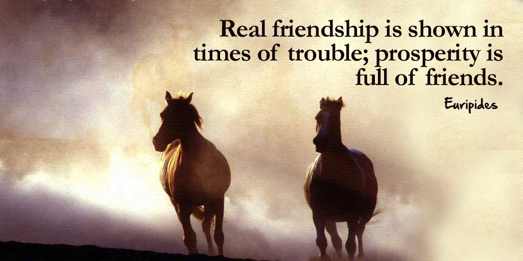 Real friendship is shown in times of trouble; prosperity is full of friends. - Euripides #quote <br>http://pic.twitter.com/zWaiwXOsi4
