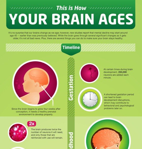 Brain Ages #Socialmedia #SMM #NLP #Internetmarketing #Contentmarketing #Mpgvip #defstar5 #makeyourownlane #DigitalMarketing #Marketing #SPDC<br>http://pic.twitter.com/GpK0hO4VrF