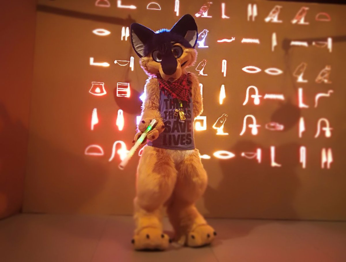Nobody fursuiting around at 4am at #EF23, omg such a shame ! The #party never ends ! <br>http://pic.twitter.com/xLa8LECaLm &ndash; bij Estrel Berlin