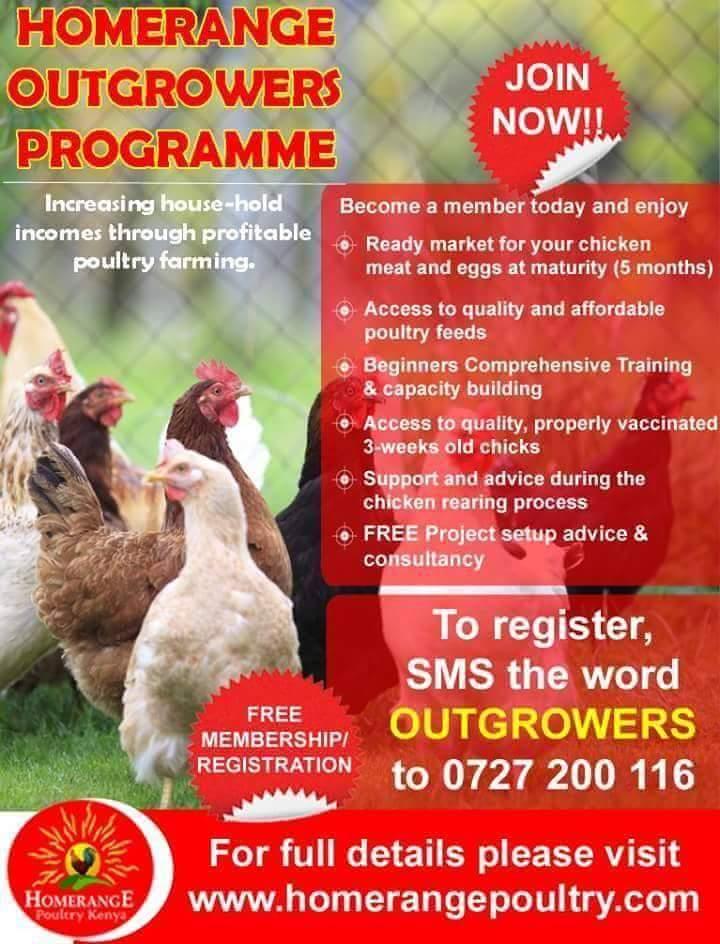 Homerange Poultry Fa (@homerangekuku) | Twitter
