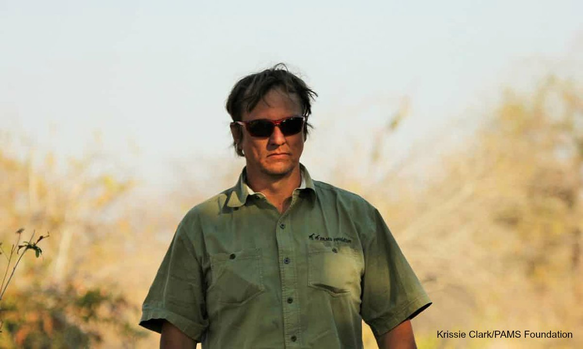 Sad news - leading elephant conservationist Wayne Lotter of @PAMSFoundation shot & killed in Tanzania:  https://t.co/JVCVzkX3JF#WildforLife