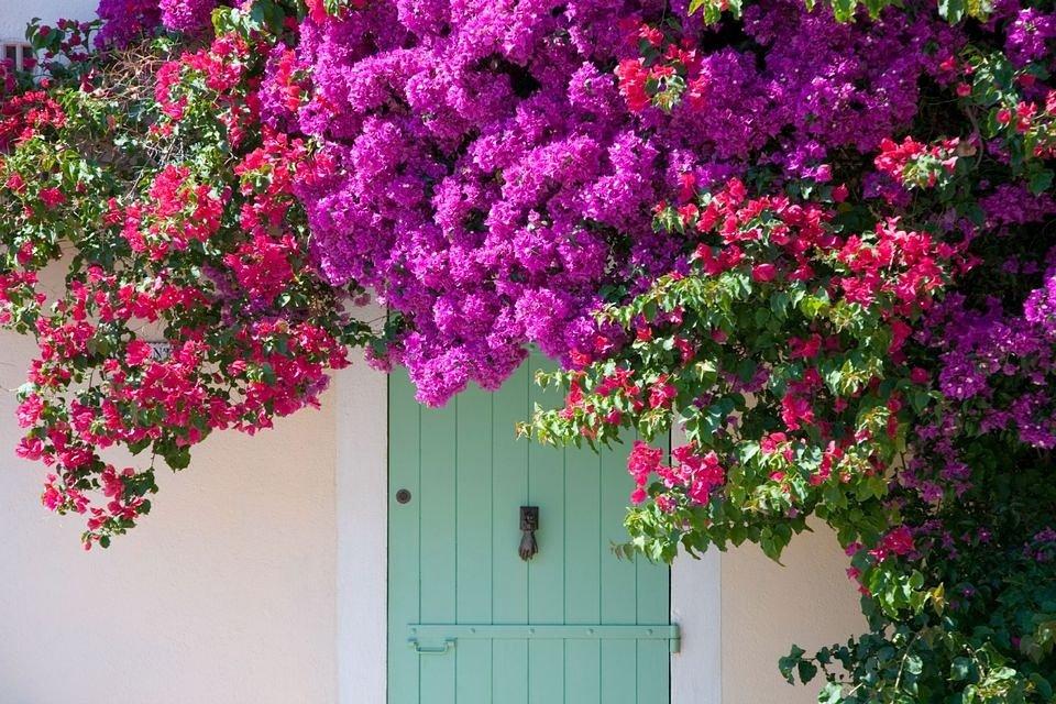 Summer  #summer #homes #villages #pinterest #inspiration #cottages #condos #interiordesign #interiorismo #decoracion #lifestyle #holidays<br>http://pic.twitter.com/4LOEzwaeSf