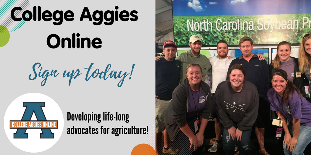 Our @AggiesOnline program kicks off next month! Sign up today to become a confident ag communicator!  http:// bit.ly/2sYNiVS  &nbsp;   #CAO17 <br>http://pic.twitter.com/CTEYvdPY4K