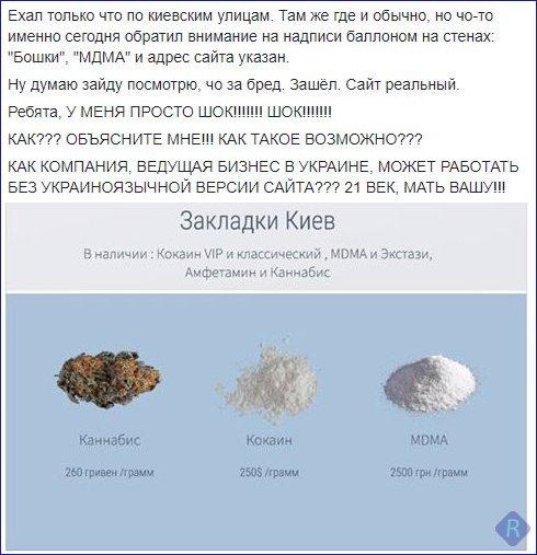 СБУ нашла в киевском Гидропарке 10 тротиловых шашек и боеприпасы - Цензор.НЕТ 5244