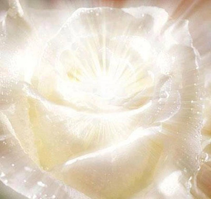 #howto experience #oneness &amp; #divine connection by awakening your out of body #chakras:  http:// ow.ly/ciQ930ev9JU  &nbsp;   <br>http://pic.twitter.com/7GZn7JvgWC
