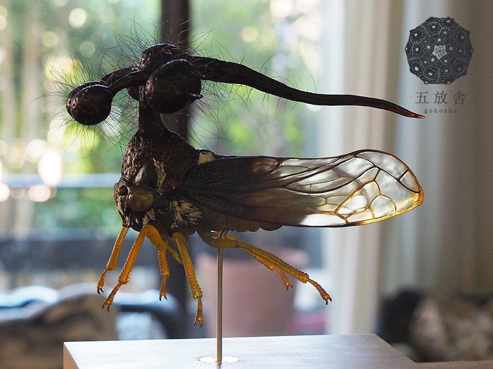 素材は透明な樹脂なので羽や複眼など光が透けて見えます。 #九州大学 #九大 #昆虫 #九州大学総合研究博物館 #福岡 #form2 #ZBrush