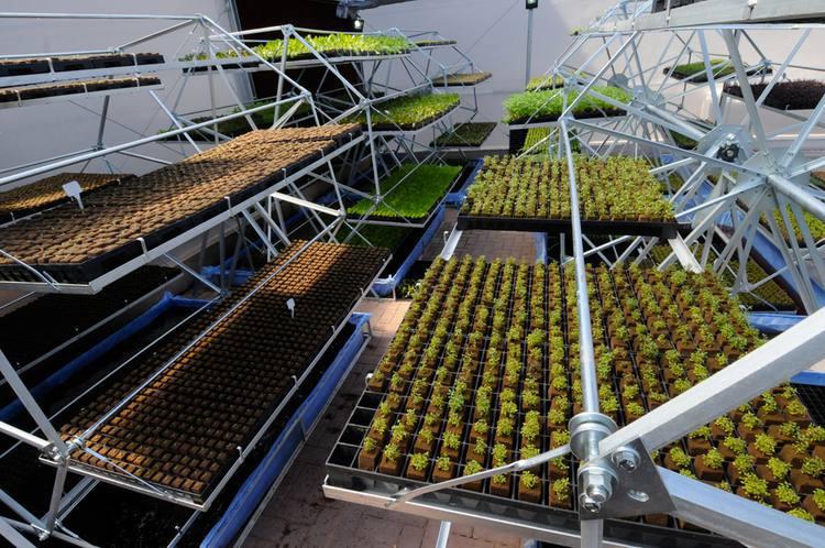 Espaço verde em BH une sustentabilidade e alimentação saudável https://t.co/WYh3NFP0fv