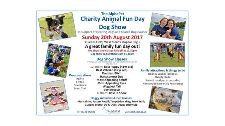test Twitter Media - Looking forward to supporting our friends @AlphaPet_Vet at their Dog Show on Sunday Donations of food & plants can be left at our stall 🐶 https://t.co/sLWfW9R5w7