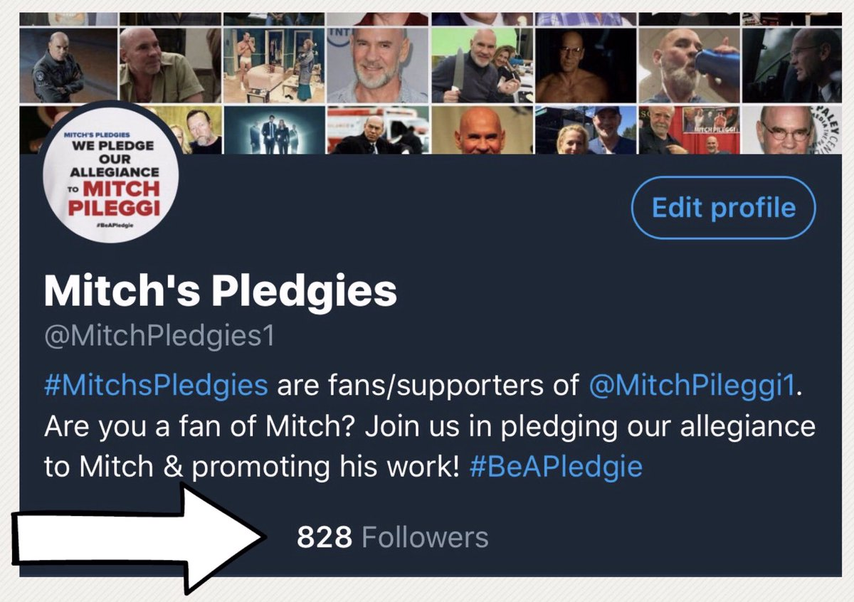 Our first anniversary is coming up 8/24. Can we get 1,000 followers by then? Show us some  &amp; follow #MitchsPledgies  #FollowFriday <br>http://pic.twitter.com/4GCrMvHM2g