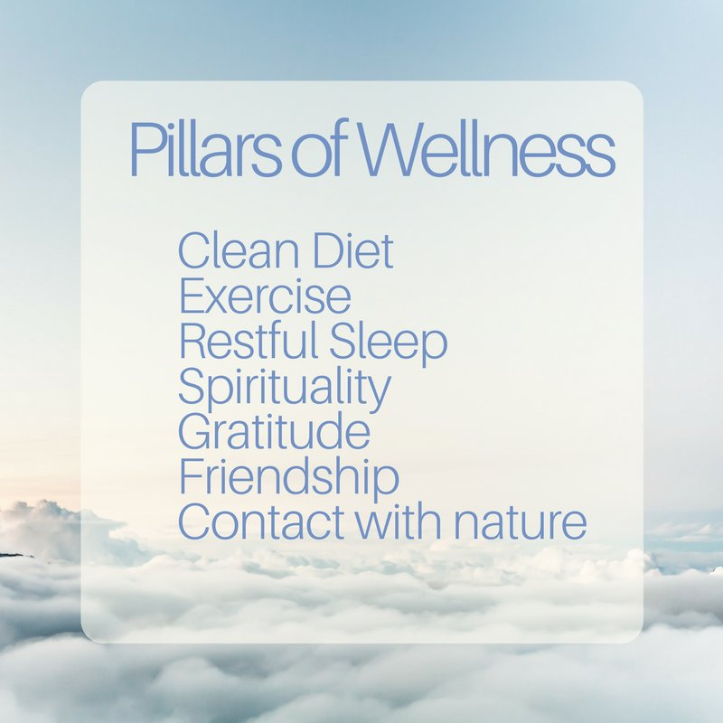 7 pillars of #health &amp; #wellness. Simple but effective. <br>http://pic.twitter.com/6q6IuQSvd9