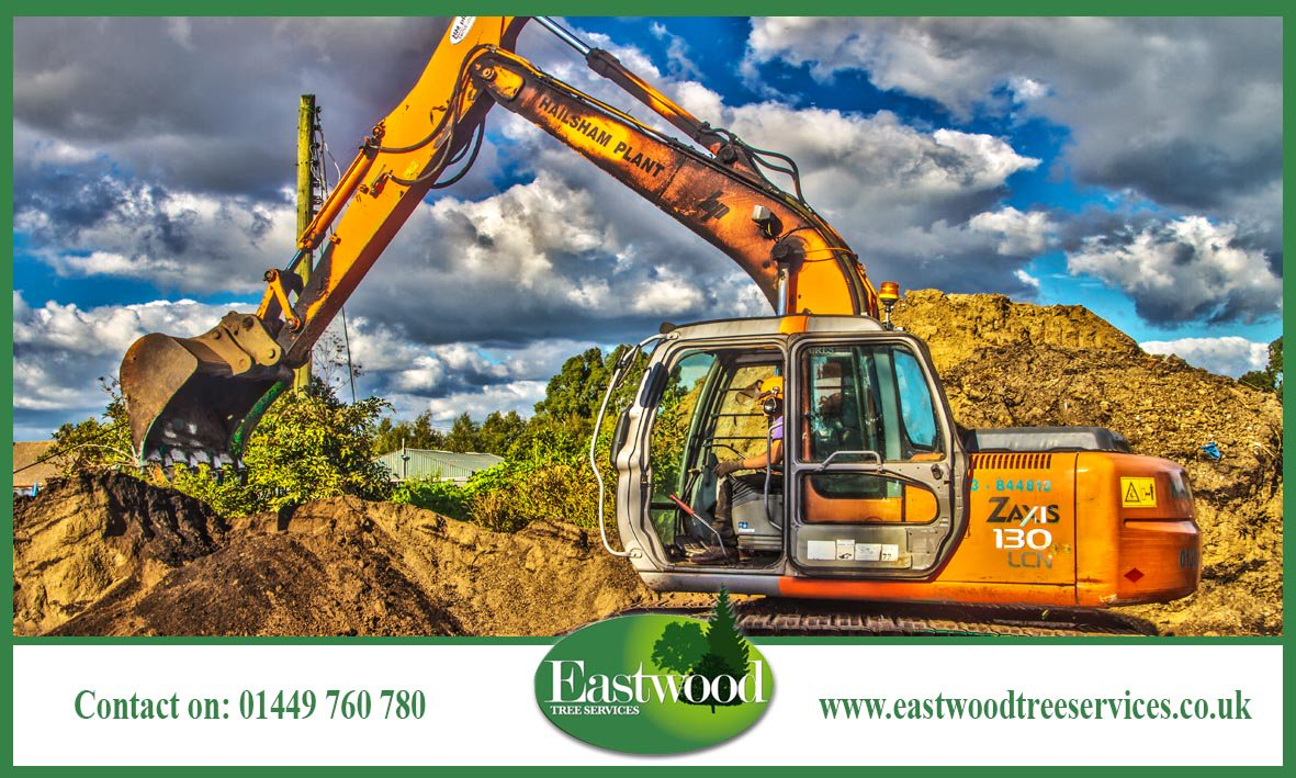 We offer #TreePlanting #Pruning #StumpRemoval &amp; more &gt;&gt;&gt;  http:// bit.ly/EastwoodTreeSe rvicesSurgery &nbsp; …  #Eastwood <br>http://pic.twitter.com/zrTlPKhxMW