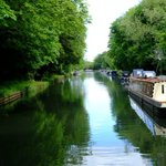 From Saul Junction tomorrow we will see something of the old Stroud Canal.
