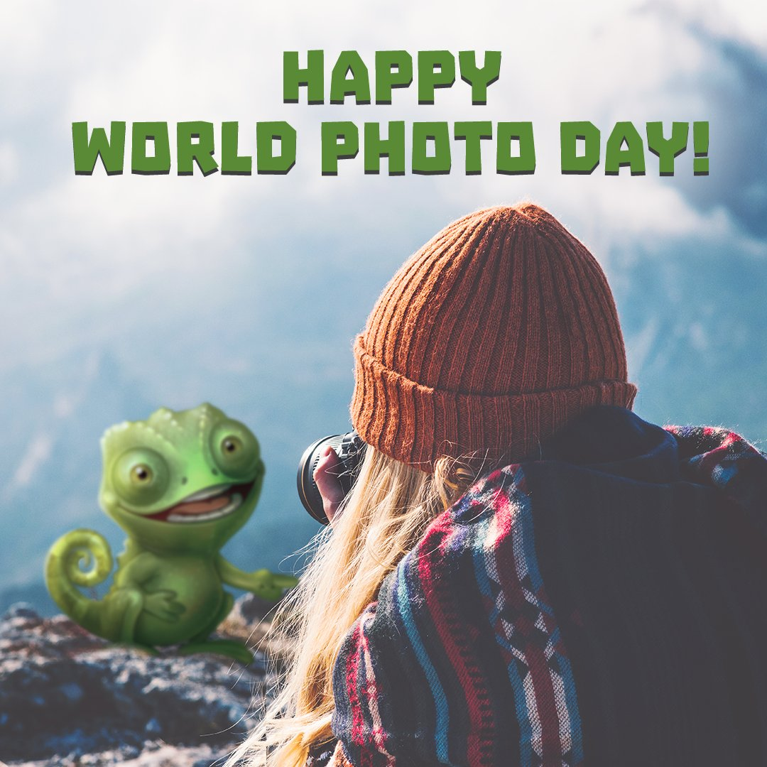 Happy #WorldPhotoDay! Be creative and artistic, whether you're a photographer, or a stunning model like Mr. Pebbles! ❤️ https://t.co/ICScF8sH3X