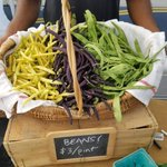 Fill your kitchen with goods from the local community. Don't miss the Marietta Square Farmers Market every weekend! https://t.co/hQzwrc78ha