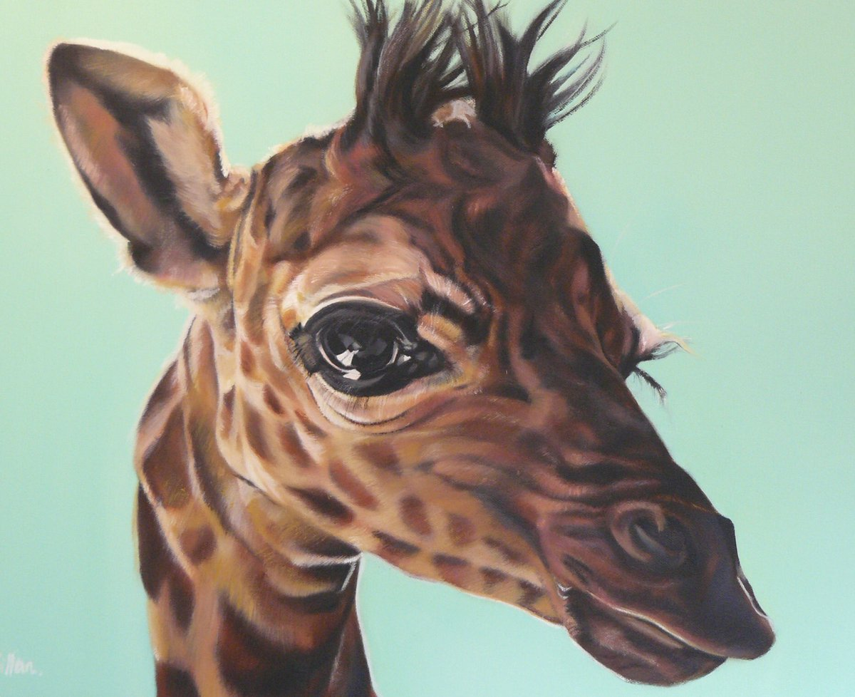 #cordovan #colour_collective Always loved this, not new though #giraffe #oil #animalart #safari #commission #gallery #love<br>http://pic.twitter.com/C1qrKWauMW