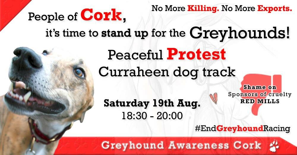 #Cork protest #Ireland this Saturday. Time to #endgreyhoundracing<br>http://pic.twitter.com/Vx97Nd3X6T