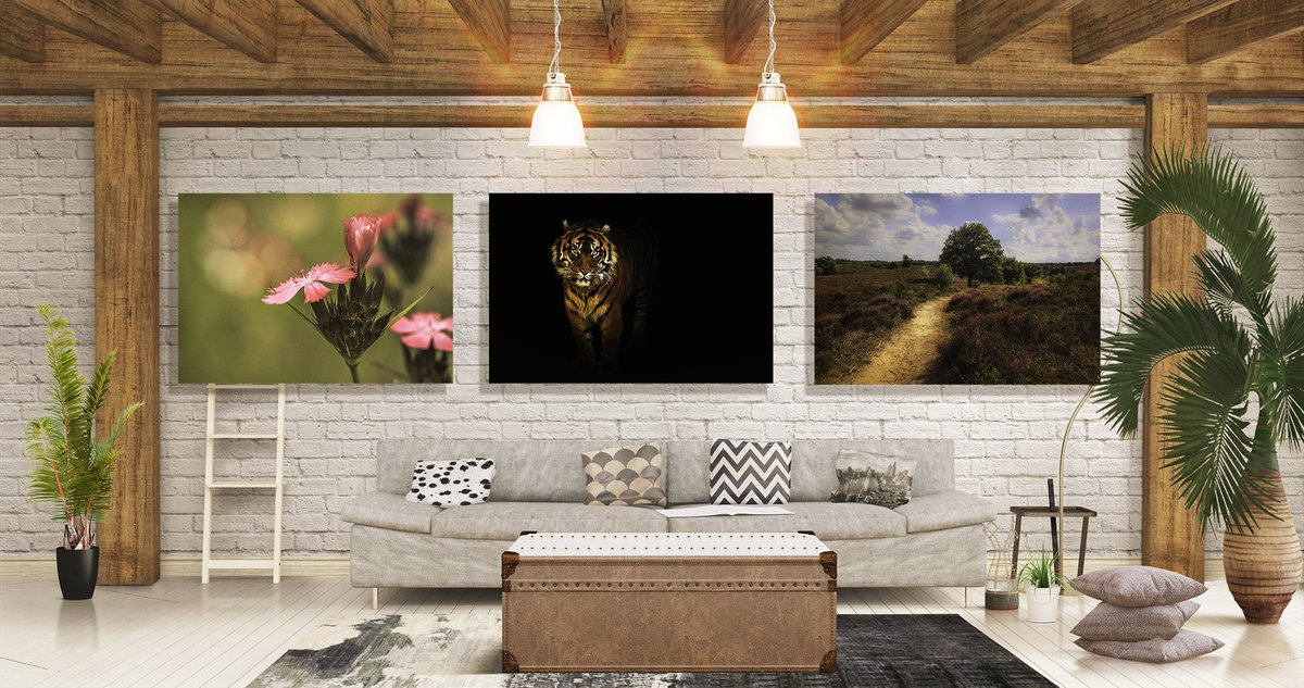 Limited Time, limited supply Promotion! Choose from 3 beautiful image. More info here:  http:// timabeln.com/limited-time-p romotion-fineartamerica-com/ &nbsp; …  #WallArt #Promo <br>http://pic.twitter.com/aa2cUiimol