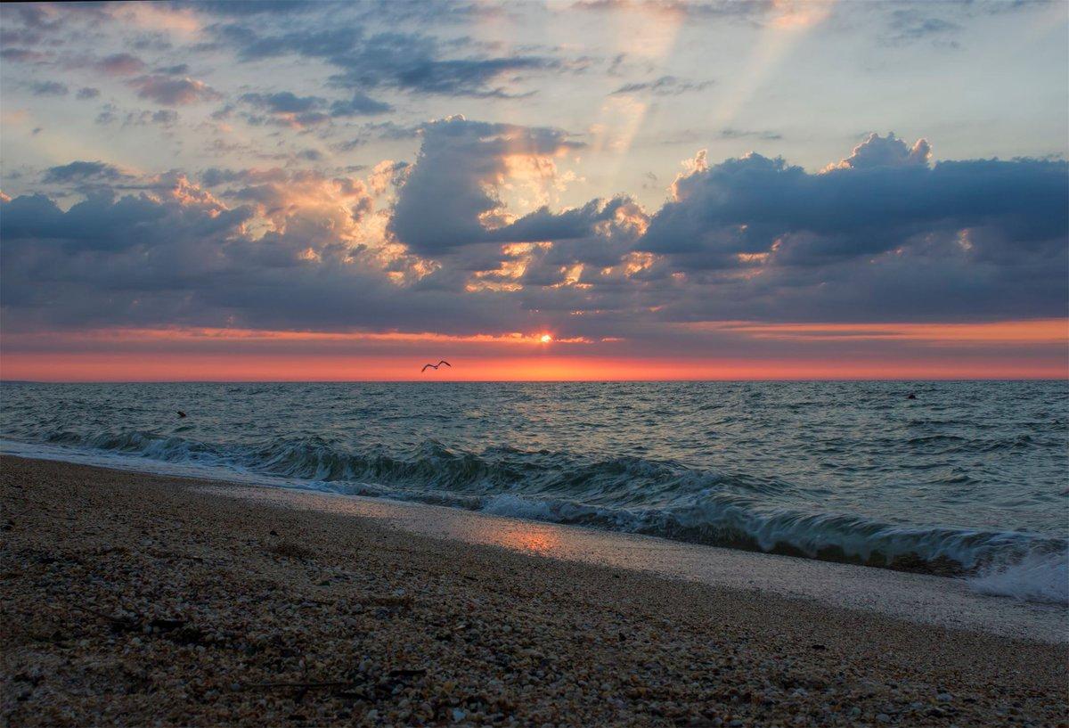 азовское море темрюк фото существуют