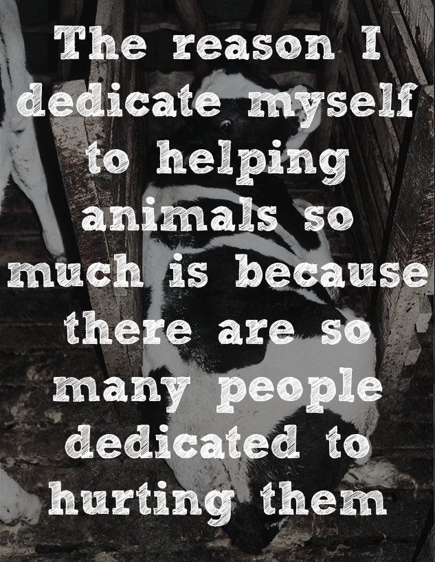 Speaking up for (and not eating) animals!  #HowIFightForJustice https:...