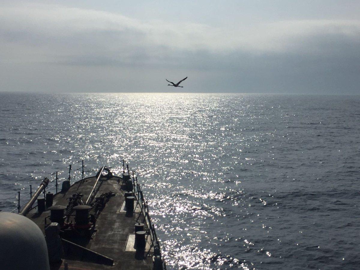 Desde el Mar de Alborán a bordo del patrullero 'Infanta Elena' os dese...