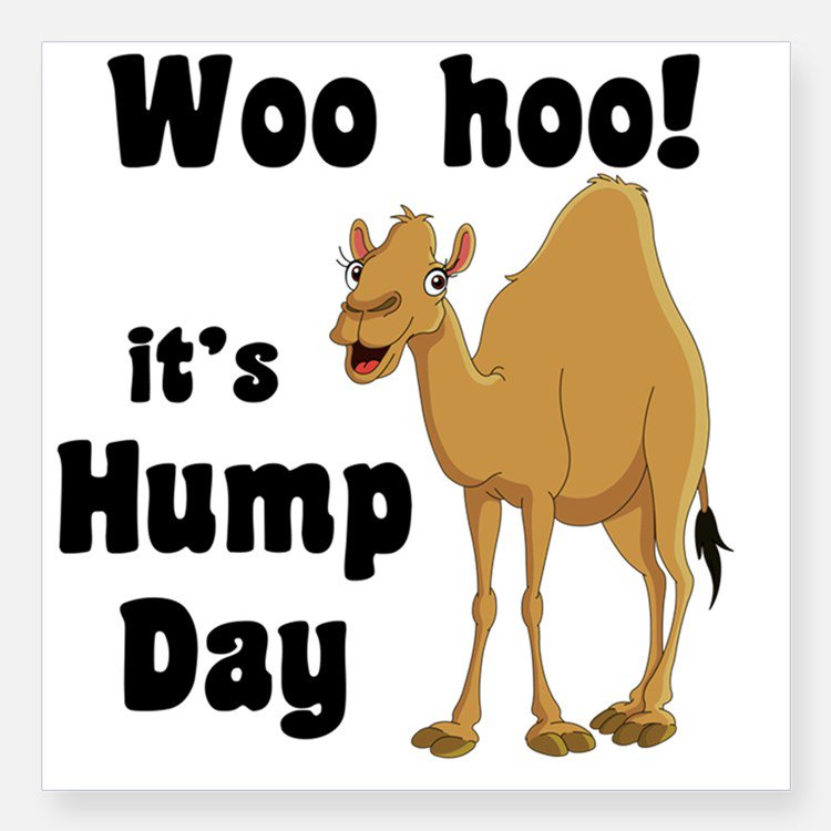 Hump day humpday18 twitter hump day ecards here are some hump day ecards for those who want to celebrate wednesday as a hump day click here httpthehumpdayhump day ecards m4hsunfo