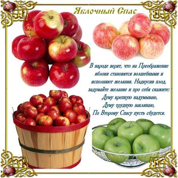 поздравление с яблоком в стихах провоза живого груза