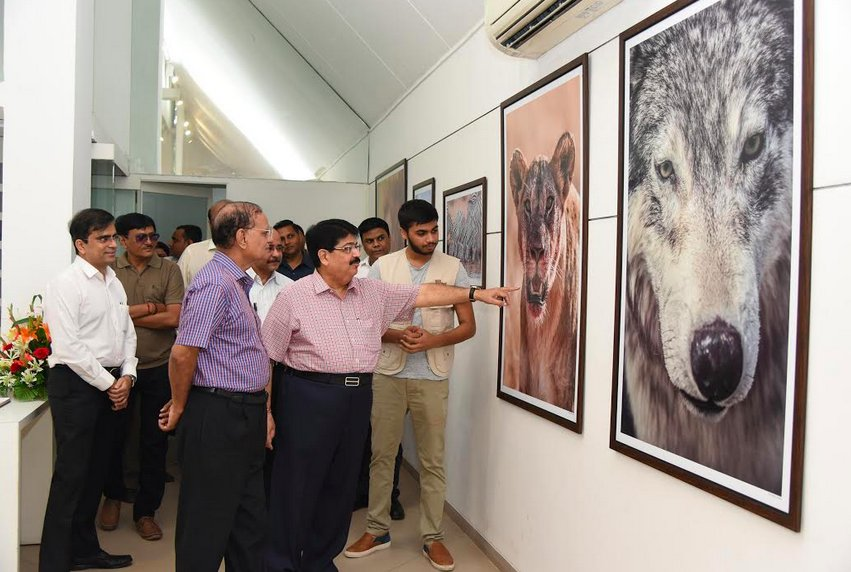 'Wildlife through the lens of Pranay Patel' exhibition opens at Kanoria Centre for Arts