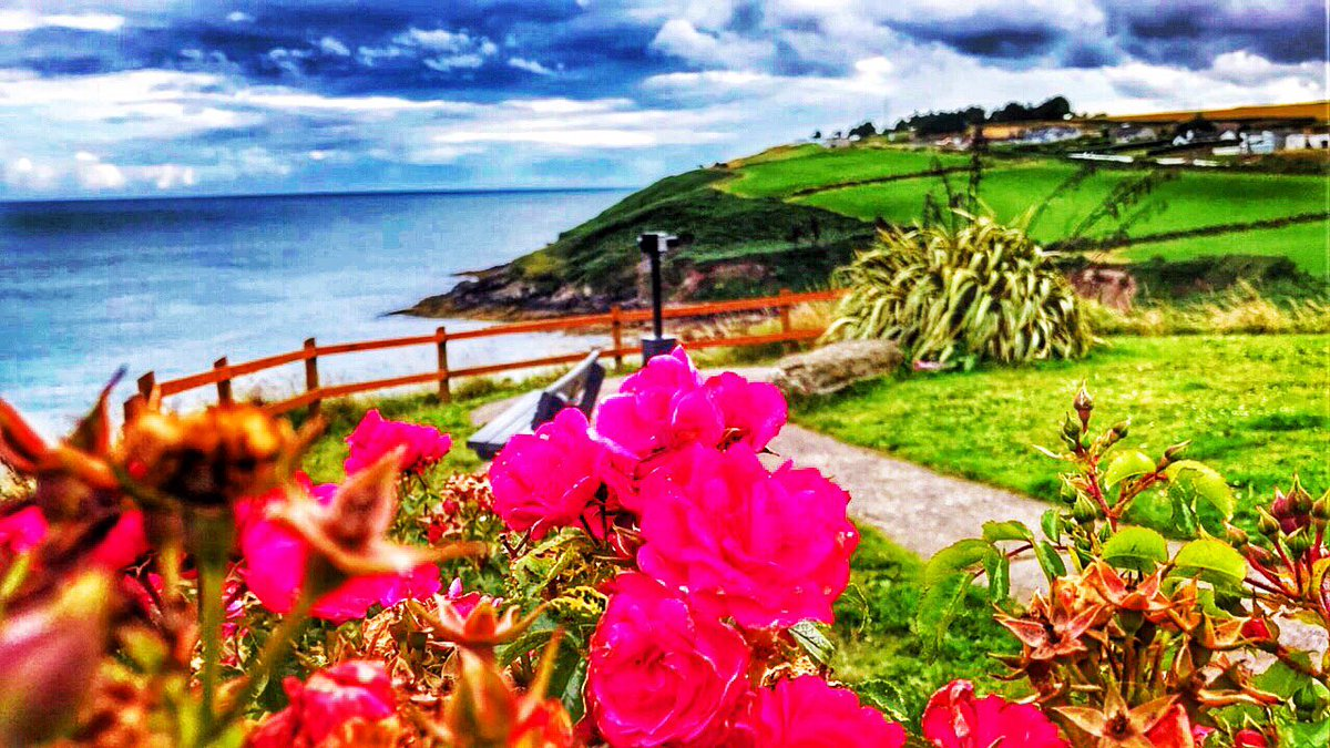 One of the most peaceful and amazing place in Cork,  . #crosshaven #cork #ireland #colorful #landscape #amazing #view #500pxrtg<br>http://pic.twitter.com/DTAYppk7RE