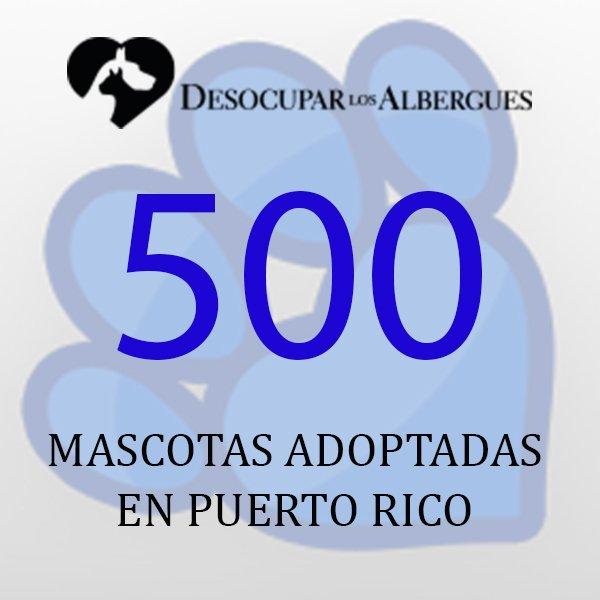 ¡Ya sobrepasamos las 500 mascotas adoptadas! Todavía hay animalitos es...